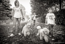 My Portraits and families