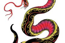 Snake Illustration / Inspiration
