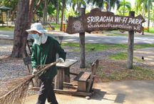 Sriracha - The Town / Find out more about the fishing village of Sriracha in Thailand. Hope Rehab Center Thailand is located in Sriracha and has easy access to the beach and town center.