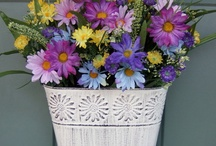 Easter & Spring / Easter & Spring tips, ideas, decorating, etc. / by Shannon Slemmons