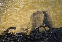rem van Den Bosch