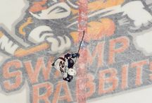 Get on the Ice with Swamp Rabbits Hockey!