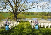 A Ceremony Under the Trees / A Place in the Vineyard offers a gorgeous, rustic ceremony setting underneath huge, Southern pecan trees. The gentle sway of the branches, the sunlight shining through the vineyard and the serene, still pond all work together to make a one of a kind ceremony setup.