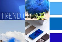 tendances du cabinet Trend Council