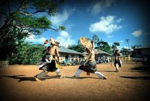 Flores ,Manggarai Fight Traditional Dance (caci)