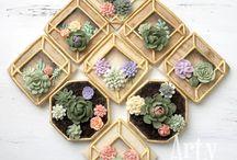 sablés décorés succulentes et cactus