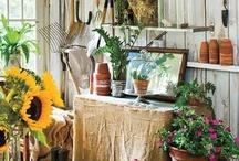Garden sheds & rooms
