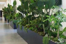 Balcony screen planter ideas 2018