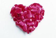 Imagenes de Amor / El amor es el idioma universal que une corazones, capaz de cambiar el mundo de muchos con bellos sueños y iluciones