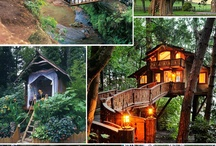 Treehouses / by Stephanie Frogge