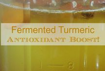 YUMMY - Fermented foods and drinks