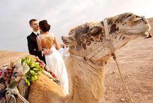 Свадьба в пустыне Марокко / Белоснежные шапки Атласских Гор и ласковое тепло марокканской пустыни - такие эффектные декорации станут незабываемым фоном для ваших отношений и самого важного дня, свадьбы. Экзотика Африки и древнего Магриба как нельзя лучше подчеркнёт вашу нестандартную натуру, а мы позаботимся, чтобы этот день прошёл максимально красиво и утончённо!
