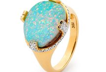 Reef Reverie Collection