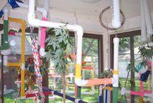 ~Bird Room Ideas~ / by Amber Conley