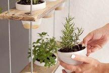 interiérové zahradky