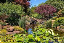 сады и парки