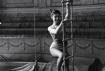Charis White - Circus