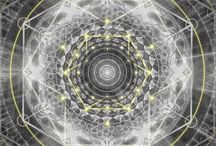 geometry of life