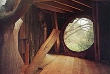 Treehouse / by Ariela Najman