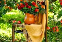 κηποι  gardens
