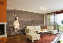 In the jungle.. / Animal inspired wall murals.