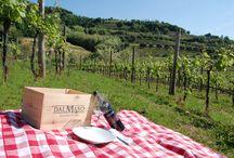 Pic-nic in the vineyard / Seduti tra i filari ad assaporare sapori genuini e una bottiglia di vino