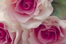 Çoklu güzeller / Güller