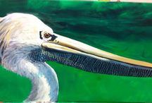 Animales / Pelicano Ana delacerda.com