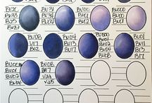LOOKBOOK: COPIC COLOR SHEETS