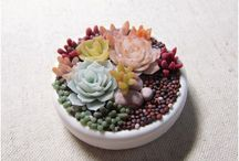 """""""small garden"""" decor plant"""