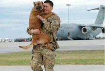 Military Pets and Service Dogs / Warriors and their pets