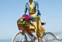 Bikes / by Linda Clark