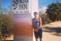 Desert Fun / Palms Springs and Twentynine Palms