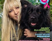 Pies / Różne strony związane z psem: szkolenie, rasy, ciekwostki itp.