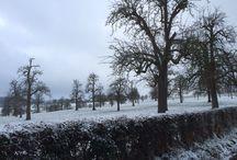 Winter in Limburg! / Nederland op zijn mooist!