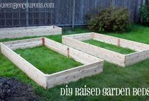 Gardening / Ideas for an attempted garden in our backyard / by Christine Hurry