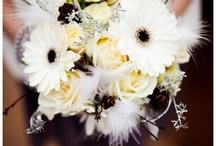 NYE wedding / by Rachel Blacklock