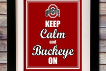 ohio state  Buckeyes / by Stacy Morris