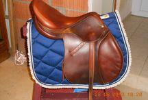 customisation et création cheval