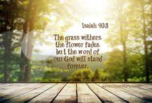 Scripture {Hide It In Your Heart}