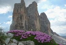 Landen ; Italië , Dolomieten !