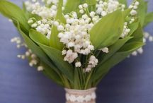 stems / floral inspiration / by Sarah Stuart