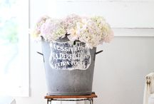 Wedding & Party Ideas / by Fawn M.