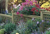 Haven / Skønne haver