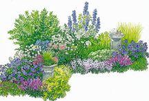 Gartenpflanzen und -planung