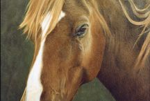 ETSY SHOP -my horses / My own horse portrait oil paintings and drawings available as custom commissions.
