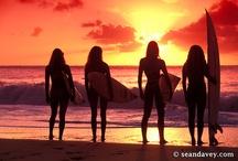 BoardChicks / Girls on Boards