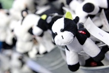 Purple Cow Gift Shop / by World Dairy Expo