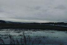 田んぼは一足早く、また来年ですね。今年の穫れ高はどうだったのでしょうか。 It's a today's sky. #landscape #todayssky #rainny #alcatelidol3 #イマソラ写真