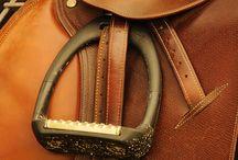 saddles & stirrups; breeches & boots